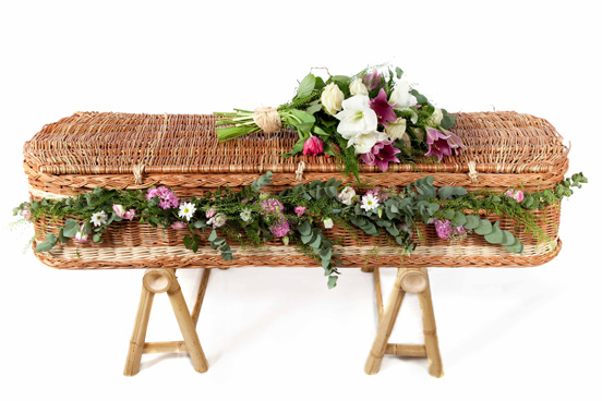 WinterWillow Eco-Coffin